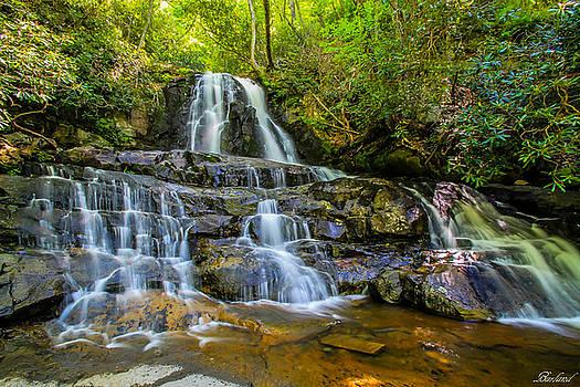 Laurel Falls by Burland McCormick