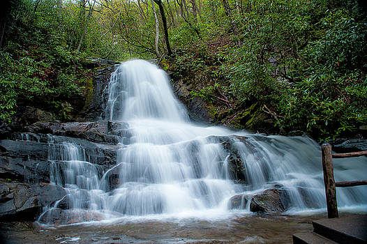 Laurel Falls by Cathie Crow