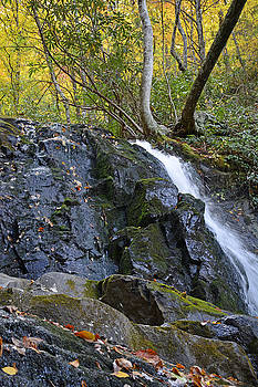 Laurel Falls Great Smoky Mountains National Park by Bruce Gourley