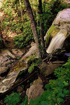Jason Blalock - Laurel Falls Overflow