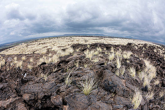 Lava field by Joe Belanger