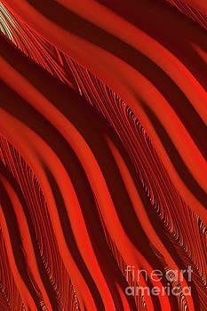 Steve Purnell - Lava Flow