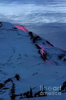 Paul Conrad - Lava on the Mountain