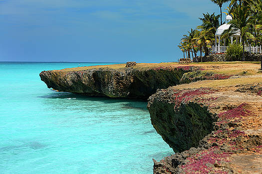 Reimar Gaertner - Lava rock shore with blow hole wells Palm trees and gazebo at Va