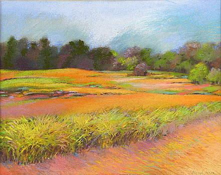 Lavendar Field by Cheryl Brumfield Knox