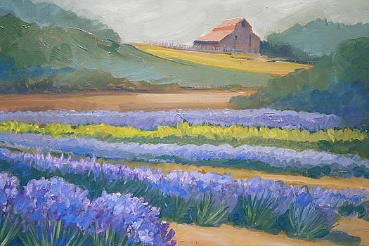 Lavendar Hollow Farm by Virginia White