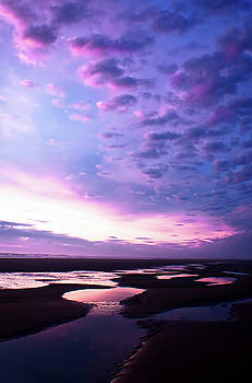 Lavender Beach Sunset by Tyra OBryant