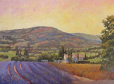 Lavender Field in Provence by Lynne Fearman