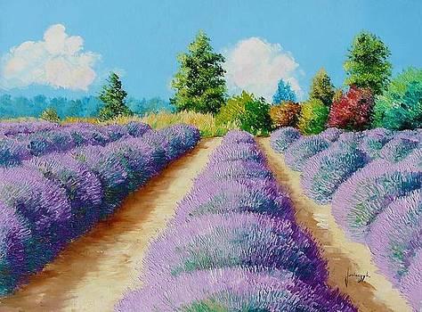 Lavender field ll by Jean-Marc JANIACZYK
