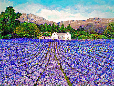 Lavender Fields by Michael Durst