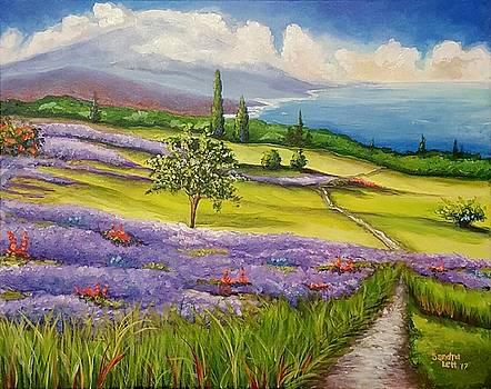 Lavender Fields by Sandra Lett