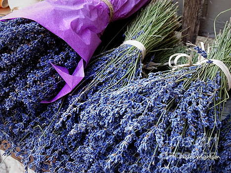 Lavender For Sale by Lainie Wrightson