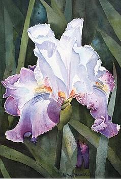Lavender Light by Kathy Nesseth