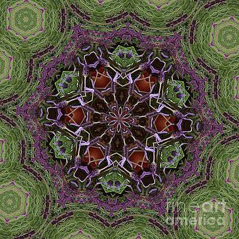 Lavender Mandala 2 by Julia Underwood