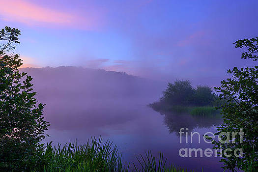 Lavender Mist Summer Morning  by Thomas R Fletcher