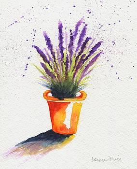 Lavender Pot by Jamie Frier