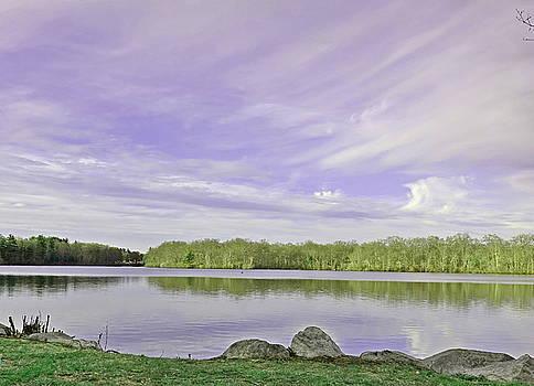 Lavender Sky by Lori Pessin Lafargue