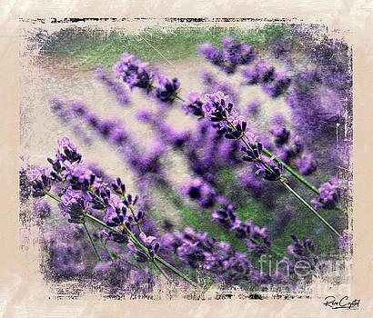 Lavender Spring by Rene Crystal
