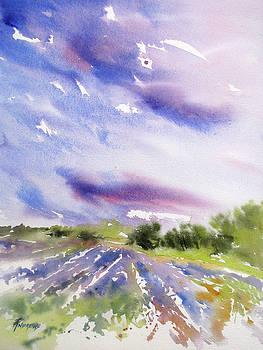 Lavender Field Splendor 1 by Rae Andrews