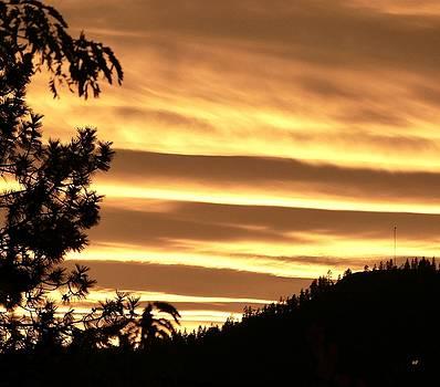 Venetian Blind Sunset by Will Borden
