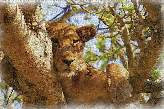 Lazy Lion in the Tree - Painting by Ericamaxine Price