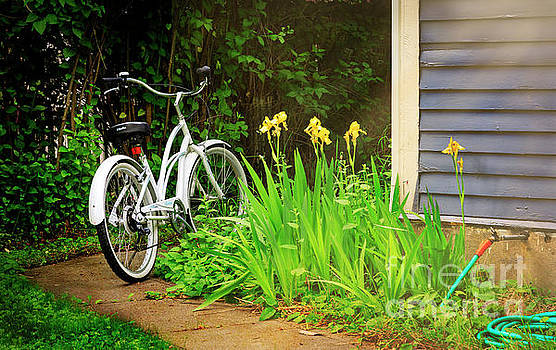 Lazy Summer Bicycle by Craig J Satterlee