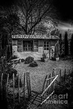 Le Jardin de Vincent Black and White by Chris Thaxter