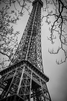Le Tour Eiffel by Miguel Winterpacht