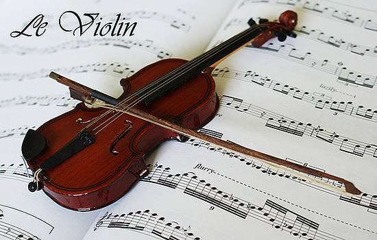 Le Violin by Robin Zhuo