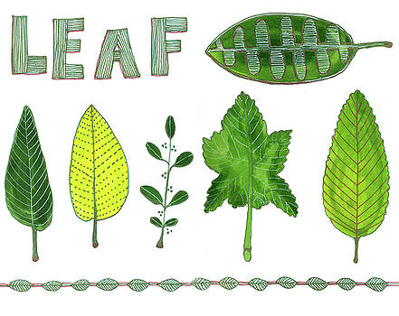 Leaf by Blenda Studio