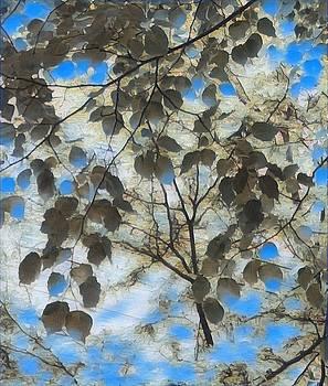 Leaf Me 3 by Devorah Malek