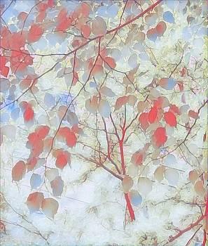 Leaf Me 4 by Devorah Malek