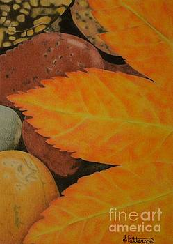 Leaf Over Rocks by Sharon Patterson