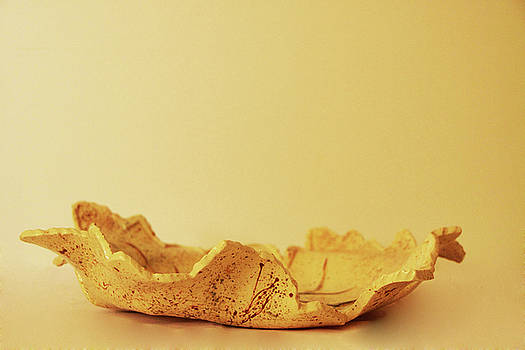 Leaf Plate2 by Itzhak Richter