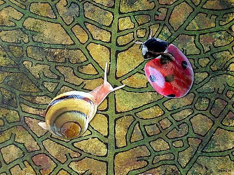 Leaf  by Samitha Hess