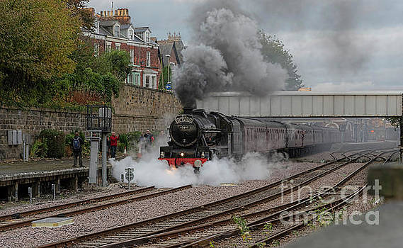 Leander at Scarborough  by David  Hollingworth