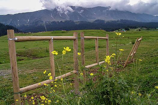 Leaning fence by Hitendra SINKAR
