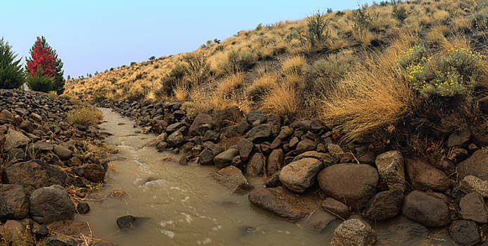 Learn To Swim, Creek Bed Quickly Filling with Water During Autumn Rainstorms in the High Desert by Brian Ball