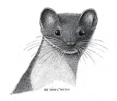Lee Pantas - Least Weasel