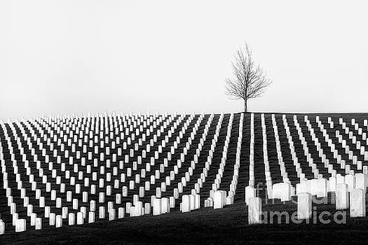 Leavenworth National Cemetery  by Lisa Plymell