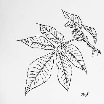 Leaves 1 by Dean Italiano