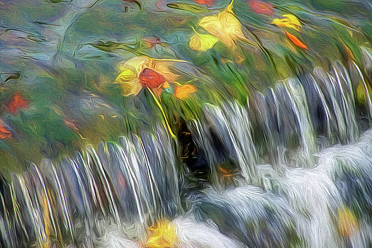 Leaves Caught In A Waterfall 2 - Impressions by Susie Peek