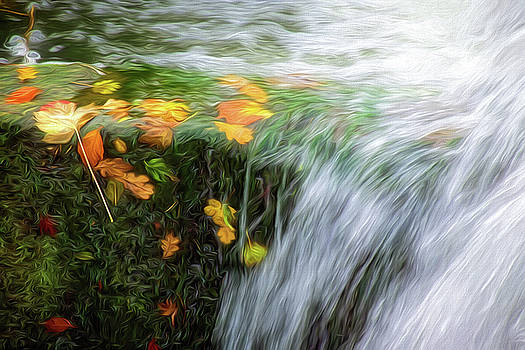 Leaves Caught In A Waterfall - Impressions by Susie Peek