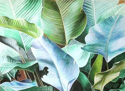Leaves Of Color by Suzahn King