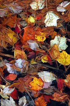 Sam Davis Johnson - Leaves On Water 1