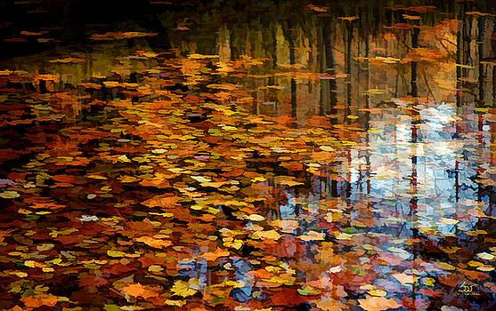 Sam Davis Johnson - Leaves on Water 2