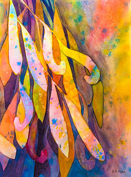 Eucalyptus Leaves by Vickie Myers