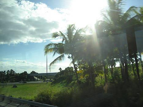 Stephen Hawks - Leaving Miami