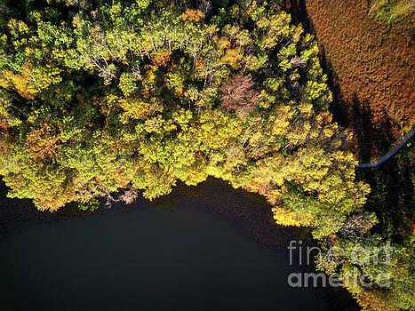 Wayne Moran - Lebanon Hills Park Eagan, Autumn Drone