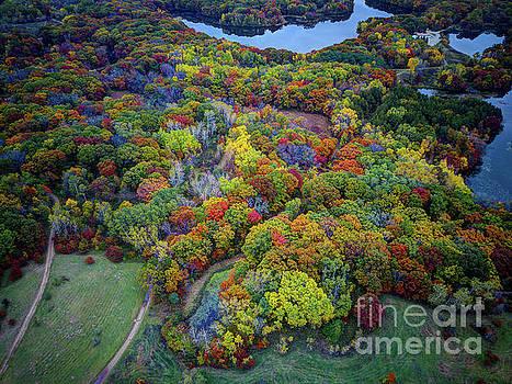 Wayne Moran - Lebanon Hills Park Eagan MN Autumn II by Drone